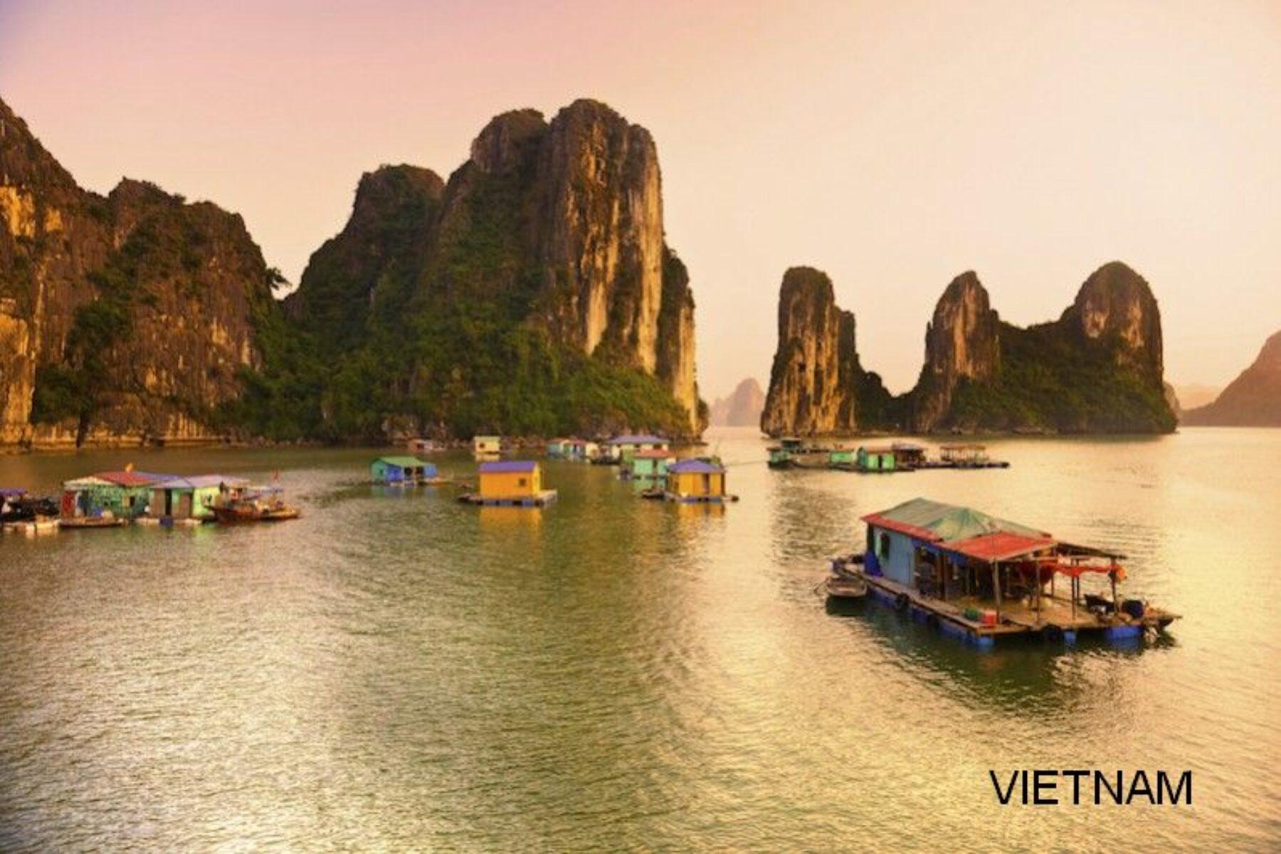 Vietnam chiaro S